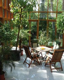 Kış Bahçesi Bitkileri